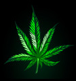 Green cannabis leaf on black background