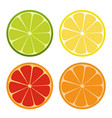 lemone lime orange icon citrus set refreshing vector image vector image