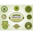 Set of organic food labels vector image vector image