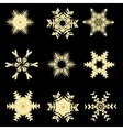 Snowflake vector image vector image
