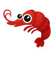 adorable red shrimp with big shiny eyes small vector image vector image