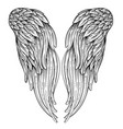 angels wings ornamental baroque style element vector image vector image