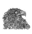 head of an eagle vector image
