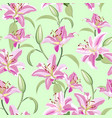 lily flower seamless pattern on green background vector image