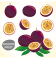 Set of passion fruit in various styles vector image vector image