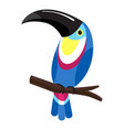 toucan on branch icon cartoon style vector image vector image