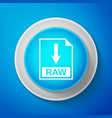 white raw file document icon download raw button vector image