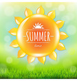 Summer Time Poster With Grass vector image