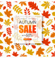 autumn sale promo poster with golden leaves vector image vector image