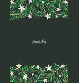 coconut palm leaves and white flower frame vector image vector image