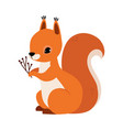 red fluffy squirrel with bushy tail holding tree vector image vector image