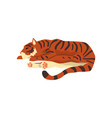 tiger sleeping on the floor wild cat predator vector image vector image