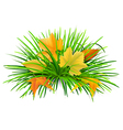 green grass with yellow leaves vector image