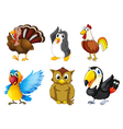 different kind birds vector image vector image