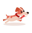 jack russell terrier character running cute funny vector image vector image