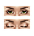 realistic female eyes set vector image