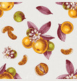 seamless pattern with mandarin branches and slices vector image vector image