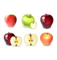 set of apple with slices vector image vector image