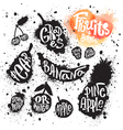 Spray paint set of ink splatter fruits and berries vector image