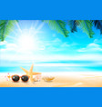 sunglass star fish and flower in sand beach vector image vector image