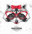 retro hipster animal raccoon hand drawing muzzle vector image