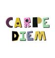 carpe diem lettering vector image