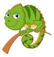 lizard cartoon vector image vector image