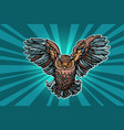 beautiful realistic owl in flight vector image vector image