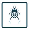 Colorado beetle icon vector image