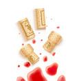 grapes wine bottle cork vector image vector image