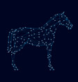 horse wireframe with luminous lights side view vector image vector image