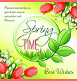 spring time greeting card tulip flowers vector image vector image