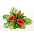Exotic tropical hibiscus flowers and monstera