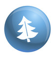 fir tree icon simple style vector image vector image