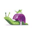 snail house helmet vector image