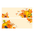 thanksgiving background with space for text vector image vector image