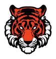 tiger animal mascot head logo vector image