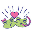 cute frog couple animal with heart design vector image vector image