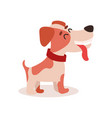 cute funny jack russell terrier dog character vector image