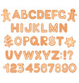 font alphabet and numbers from gingerbread vector image