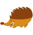 hedgehog cartoon animal character vector image vector image