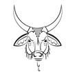 Indian sacred cow zebu vector image vector image