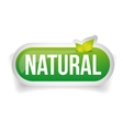 Natural button with leaves vector image vector image