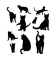 set black cats silhouettes playing cats vector image vector image