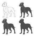 set with a pit bull dog vector image vector image