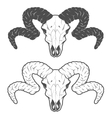 Skull of a sheep The two versions vector image
