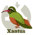ABC Cartoon Xantus vector image