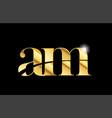 alphabet letter am a m gold golden metal metallic vector image