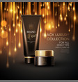 cosmetics products with luxury collection vector image vector image