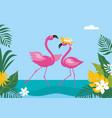 couple pink dancing flamingo vector image